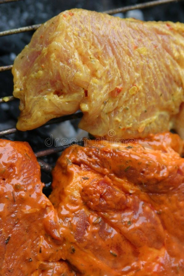 Download Barbecue stock image. Image of cole, cooking, spices, yellow - 793087