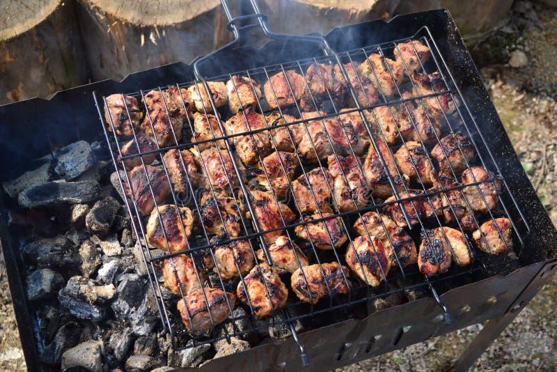 Barbecue in aard stock afbeelding