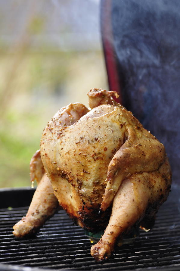 Download Barbecue Beer Chicken stock photo. Image of smoke, barbecue - 16227256