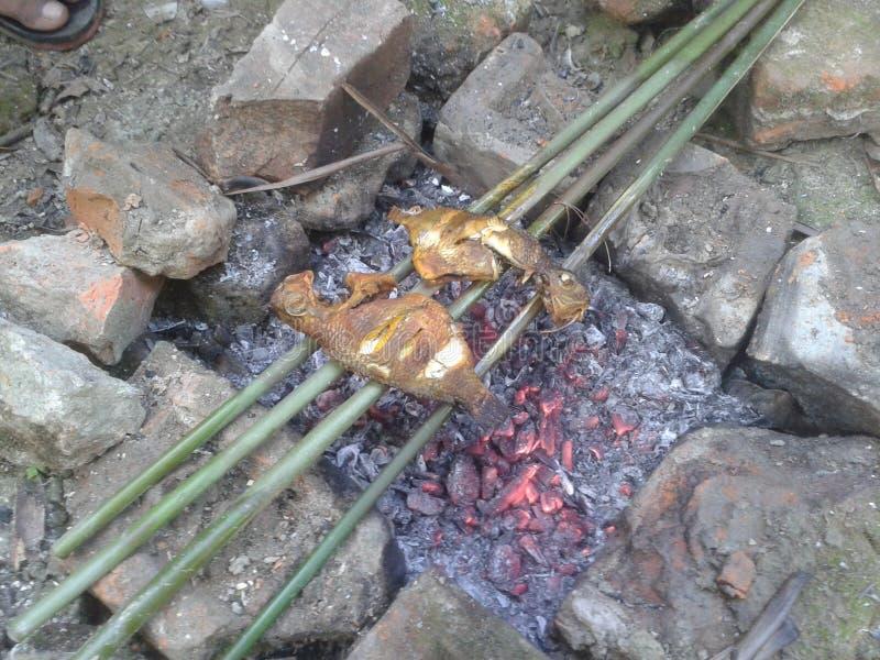 Barbecue del pesce fotografia stock