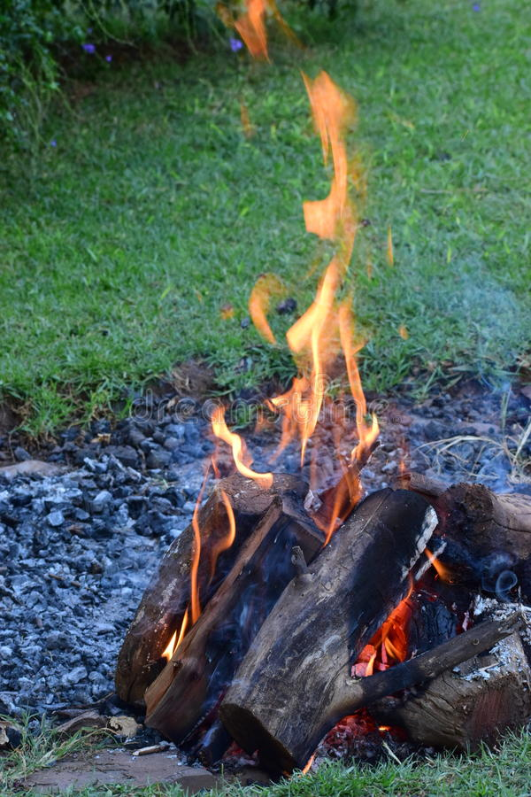 Barbecue fire. Fire pit with burning wood royalty free stock photography