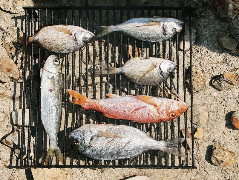 Barbecue-griglia fotografie stock