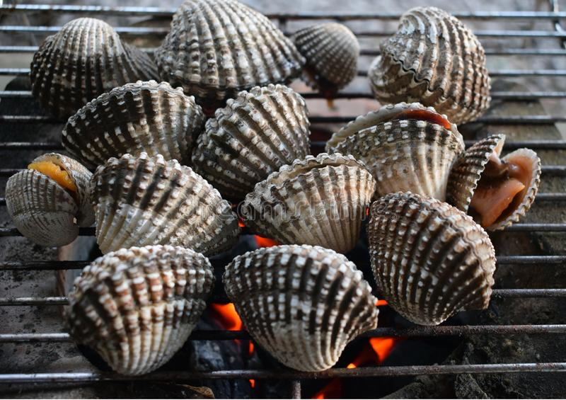 Barbecue grill cooking seafood, cockle seashells cooking on grill royalty free stock photo