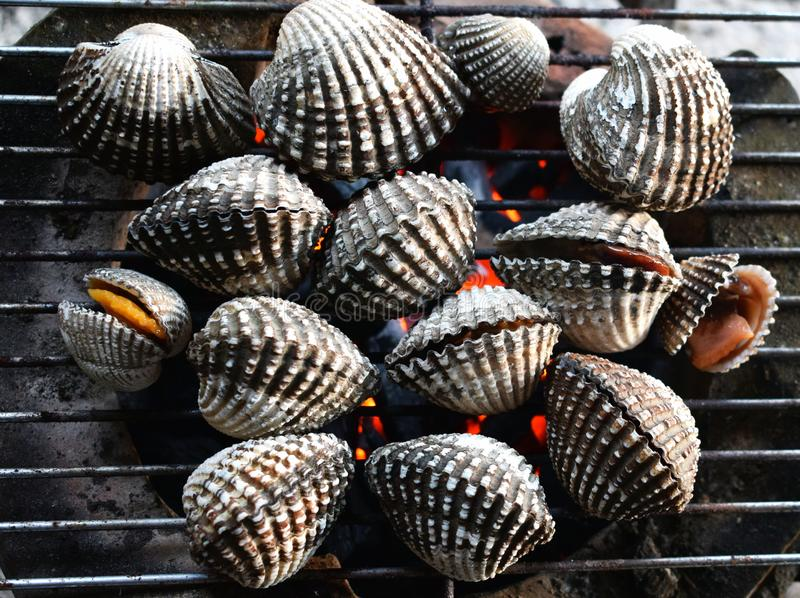 Barbecue grill cooking seafood, cockle seashells cooking on grill stock images