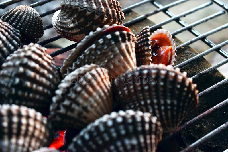 Barbecue grill cooking seafood, cockle seashells cooking on grill stock image