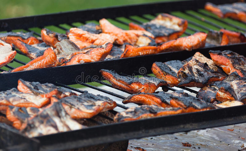 Download Barbecue Grill Salmon stock photo. Image of food, grilled - 25605844