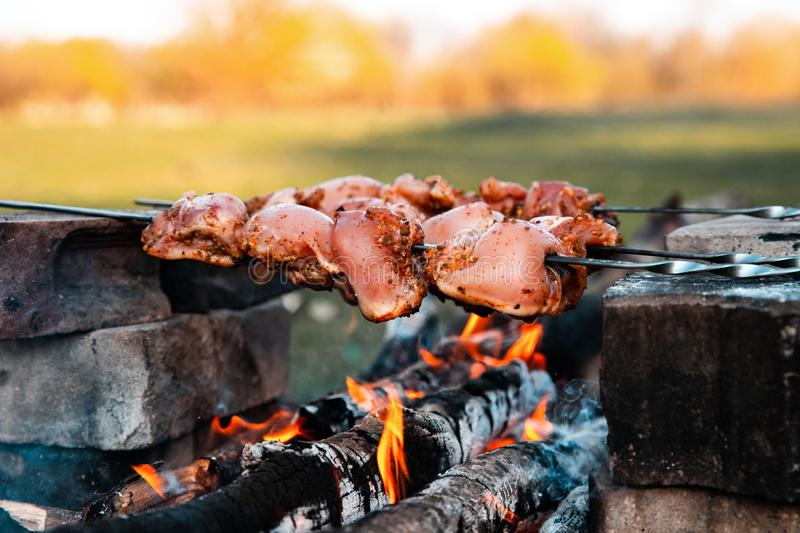 Barbecue. Meat cooking on the coals. Close up view. Cooking meat in the fire. Tourist summer background royalty free stock image