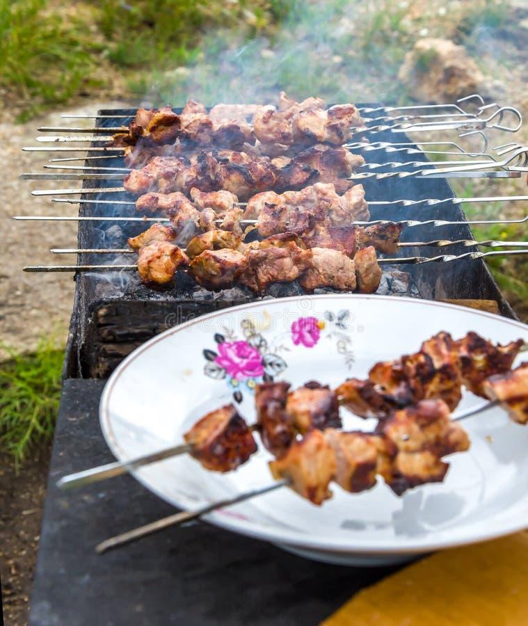 Barbecue in natura fotografia stock
