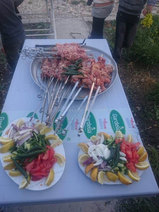 Barbecue op Speks met Oninons en Citroen royalty-vrije stock afbeeldingen