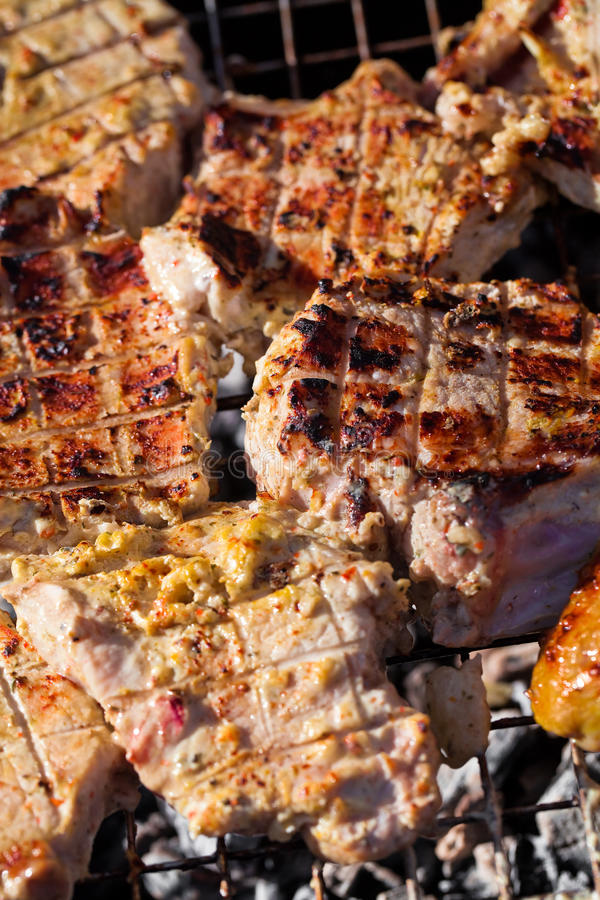 Download Barbecue pork stock image. Image of taste, lunch, season - 25408197