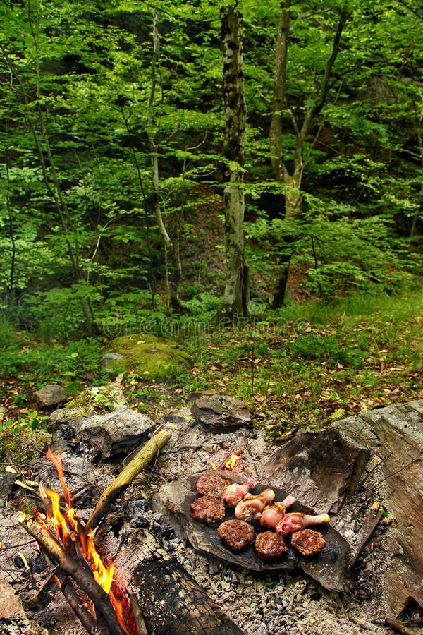 Download Barbecue In The Woods Stock Photo - Image: 32300360