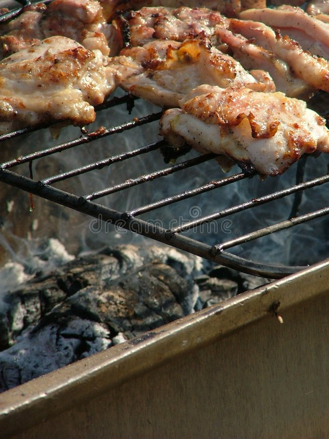 Barbecuing stock fotografie