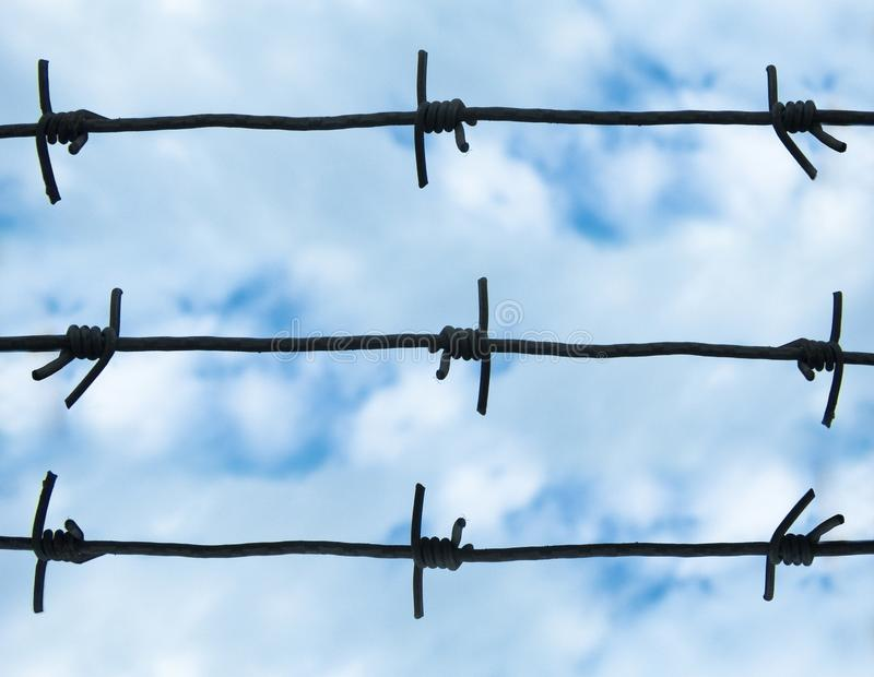 Barbed royalty free stock images
