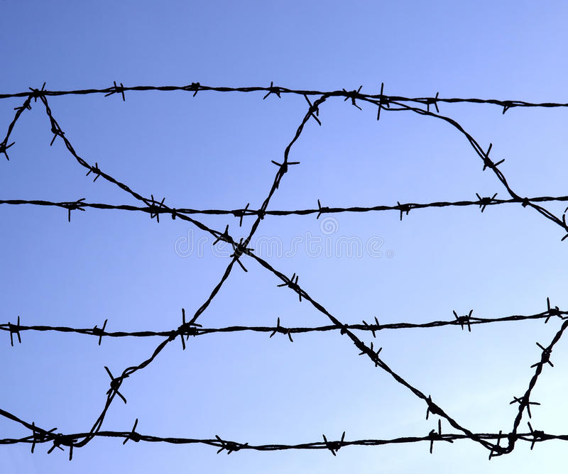 Download Barbed wire stock photo. Image of freedom, warfare, bobbed - 11618324
