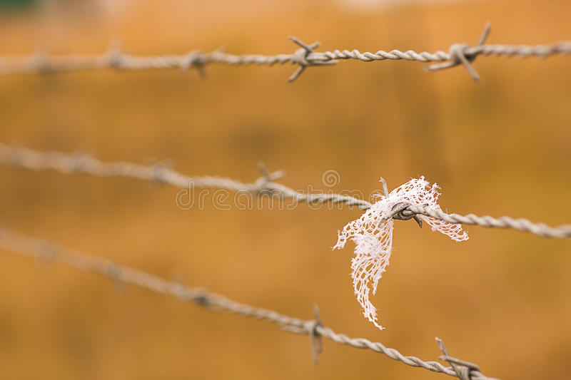 Download Barbed wire stock photo. Image of selective, barrier - 14792976