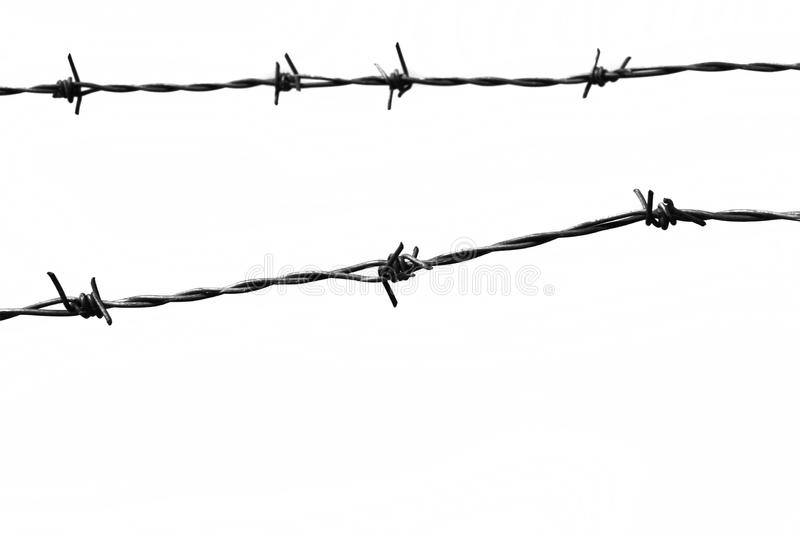 Download Barbed wire stock image. Image of dangerous, razor, white - 14817225
