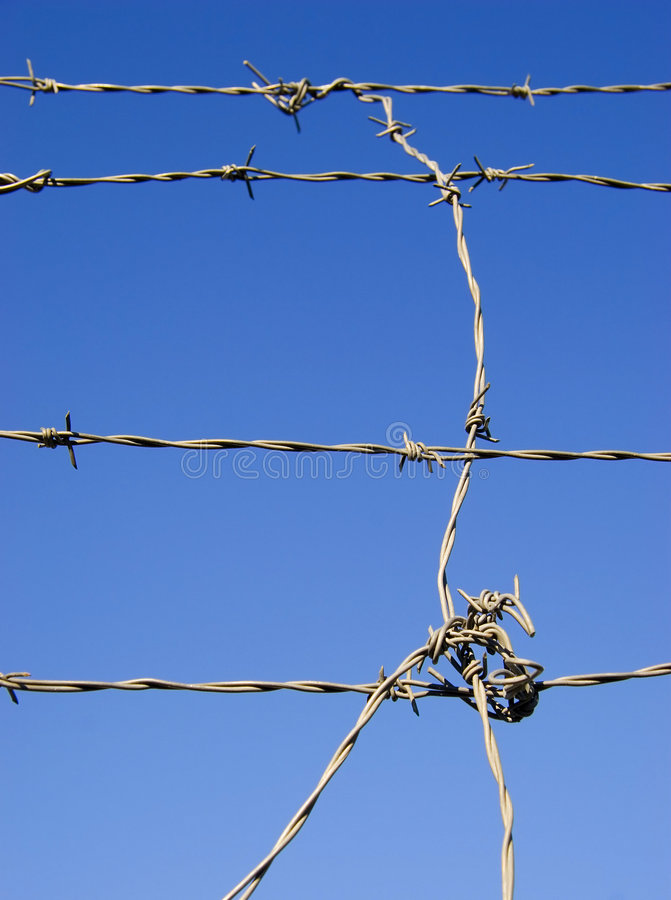 Barbed wire. Againt blue sky. vertical composition royalty free stock photos