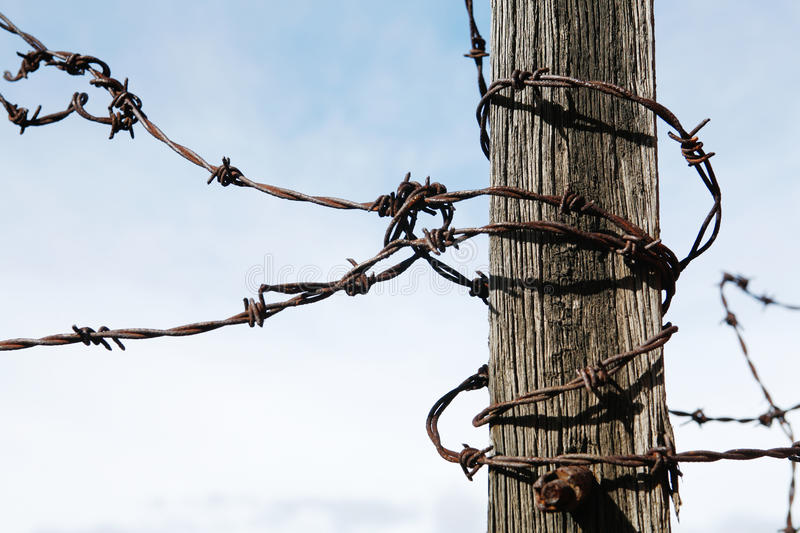 Download Barbed Wire stock photo. Image of fencing, barbed, impede - 20143680
