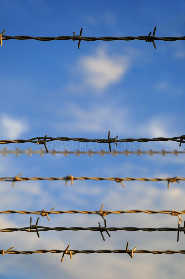 Download Barbed wire stock photo. Image of boundary, deterrent - 21765042