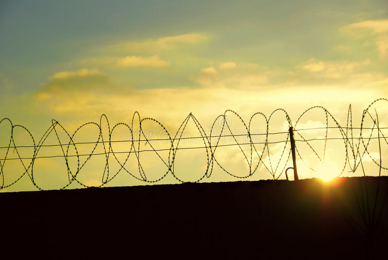 Download Barbed wire stock image. Image of dangerous, barbed, prickly - 22323171