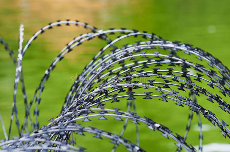 Download Barbed Wire Stock Image - Image: 24459671