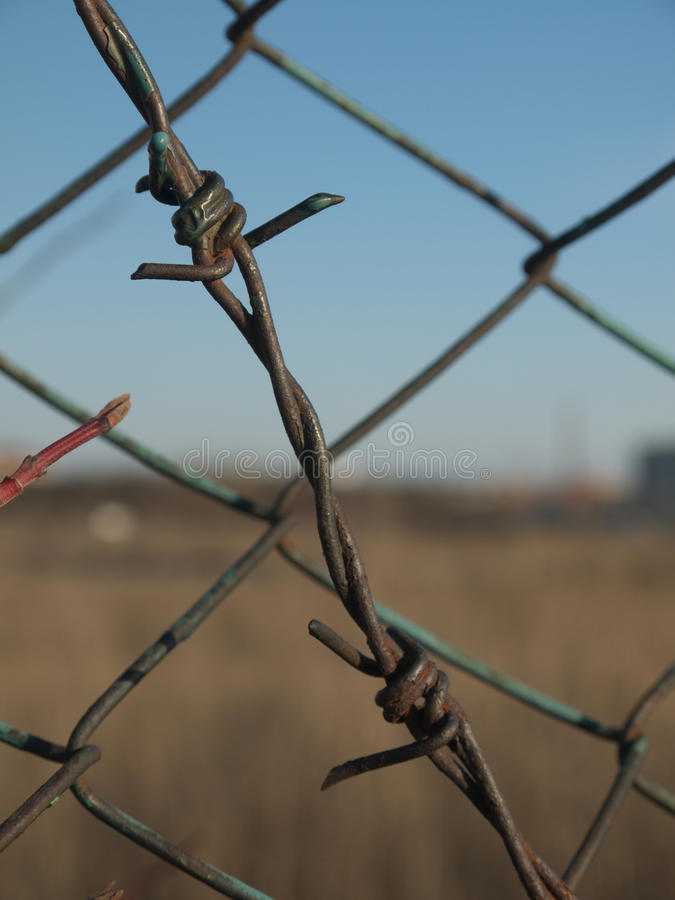 Free Barbed Wire Stock Photo - 26005260