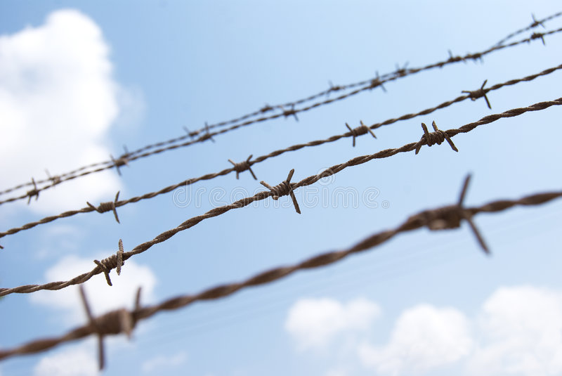 Download Barbed wire stock image. Image of convict, menace, felony - 5613659