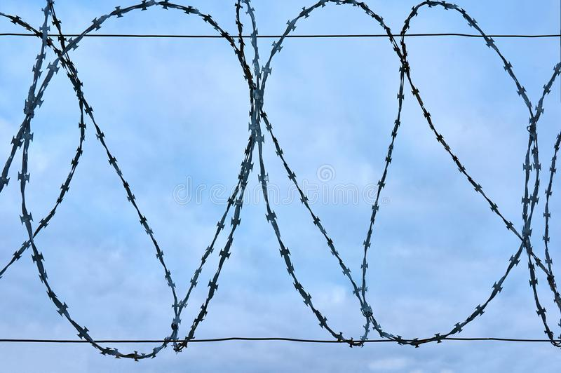Barbed wire against the blue sky. Abstract background. royalty free stock photo