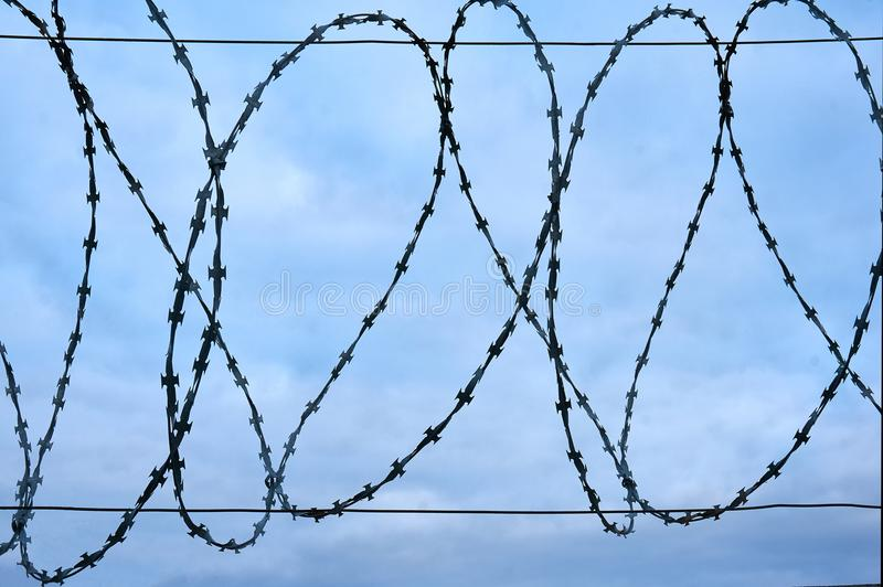 Barbed wire against the blue sky. Abstract background. stock image