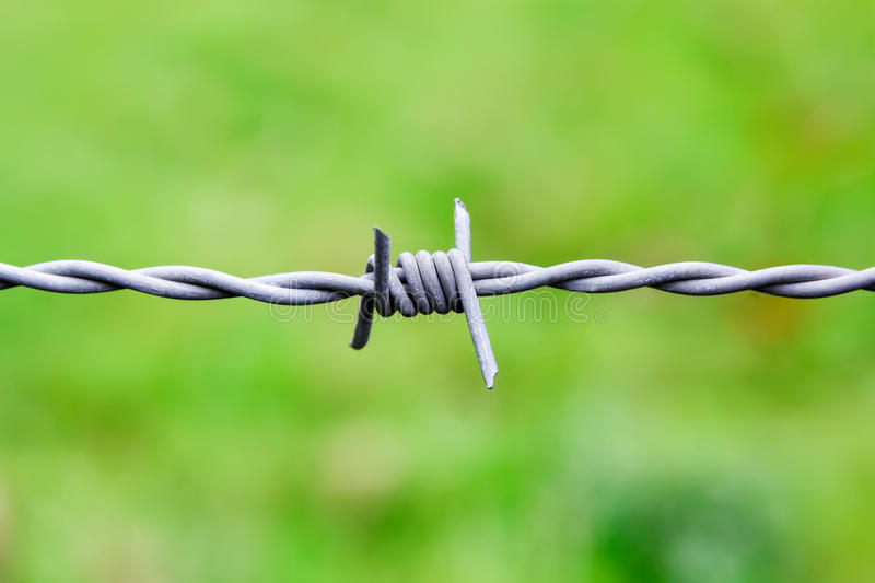 Sharp Barbed wire node royalty free stock photo