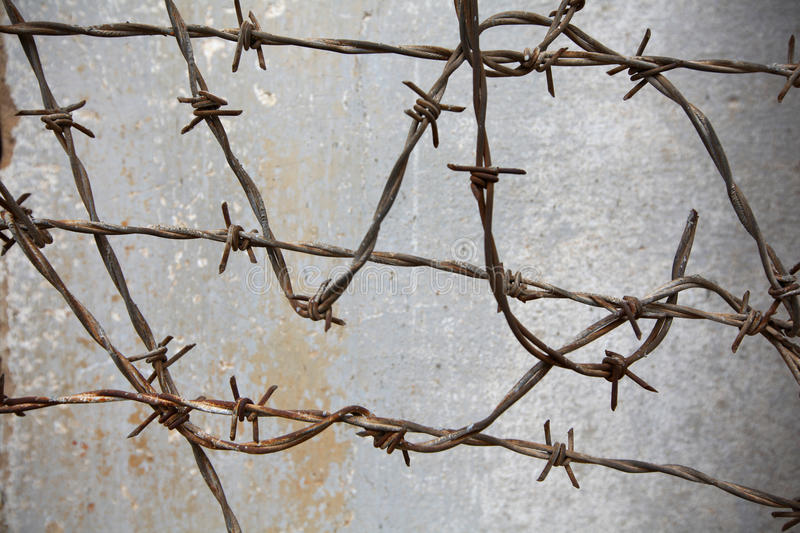 Barbed wire against the wall in prison stock image