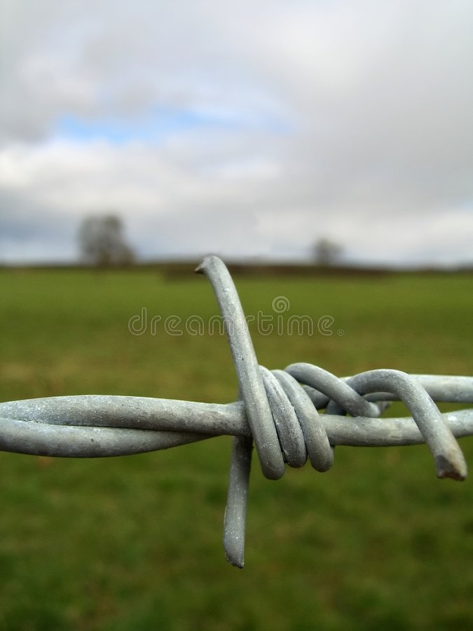 Free Barbed Wire Detail Royalty Free Stock Photo - 610615