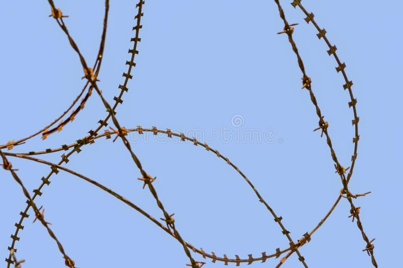 Barbed wire detail. Some barbed wire in blue back stock photography