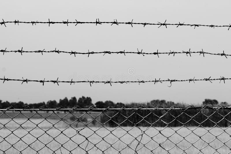 Barbed wire detention center at countryside and background gray color style stock image