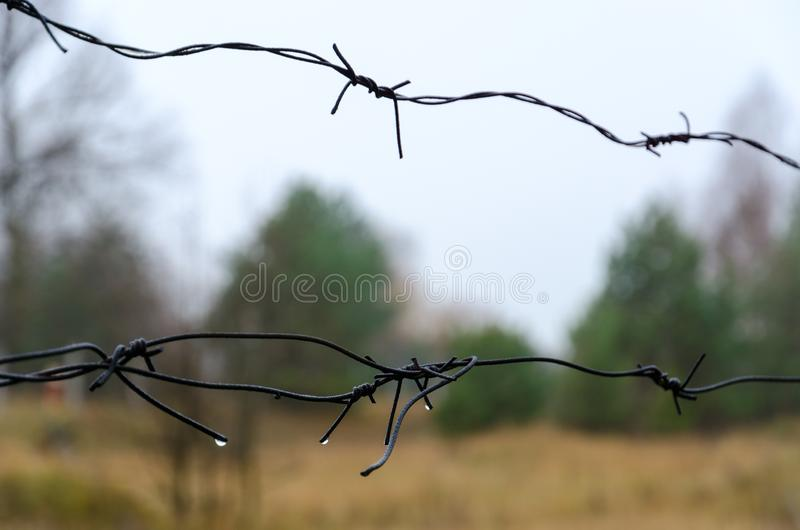 Barbed wire in exclusion zone of Chernobyl NPP, dismal autumn landscape, Ukraine stock image