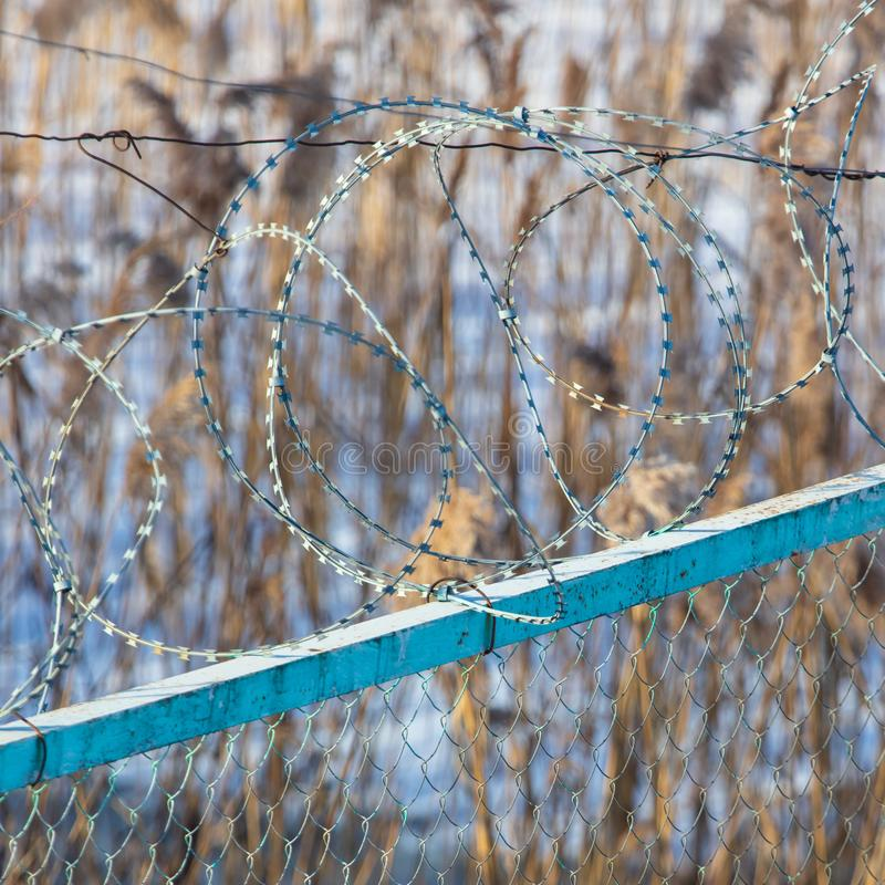 Barbed wire on the fence royalty free stock photography