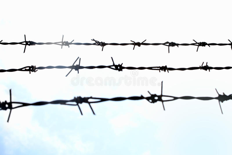 Download Barbed wire Fence stock photo. Image of gate, defending - 16903508