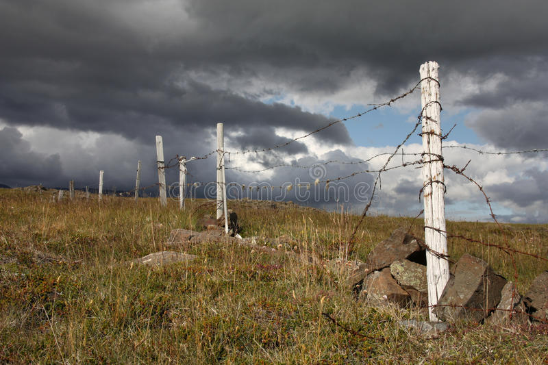 Barbed wire fence. Old barbed wire fence in mountains of Iceland royalty free stock photo