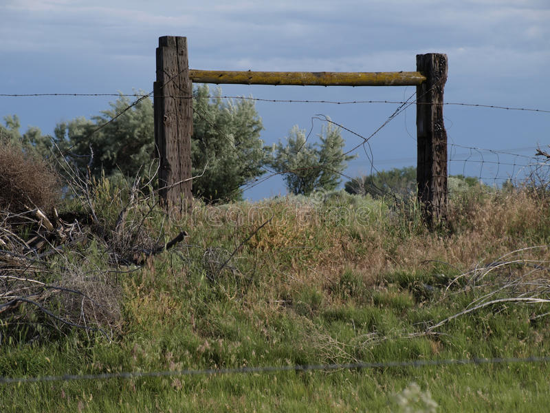 Barbed Wire Fence in Field stock image