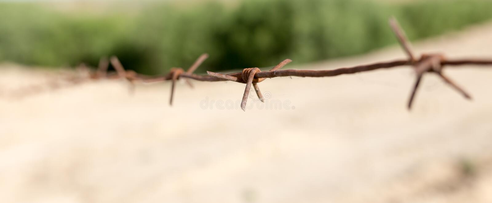 Barbed wire fence in the nature stock photography