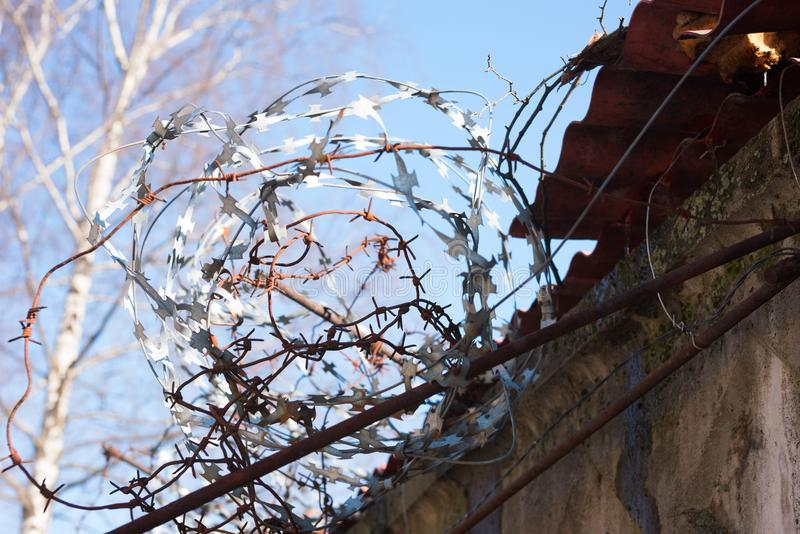 Barbed wire on the fence and nature with a tree stock photography