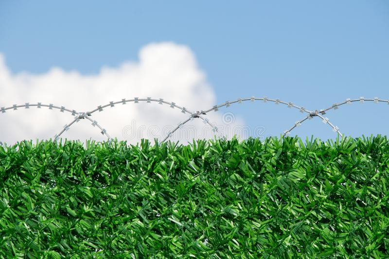 Barbed wire fence  for protection purposes of a pproperty. Barbed wire fence  used for protection purposes of a pproperty royalty free stock images