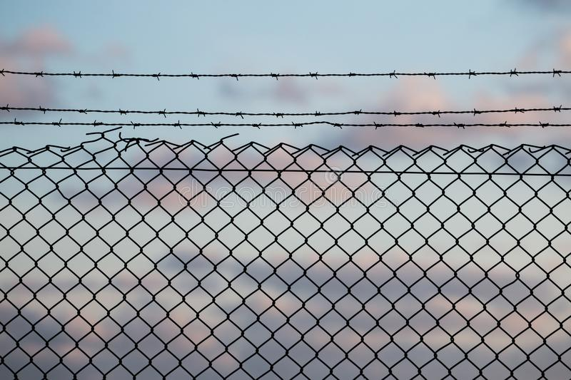 Barbed wire fence stock photo. Image of sharp, boundary - 105995952