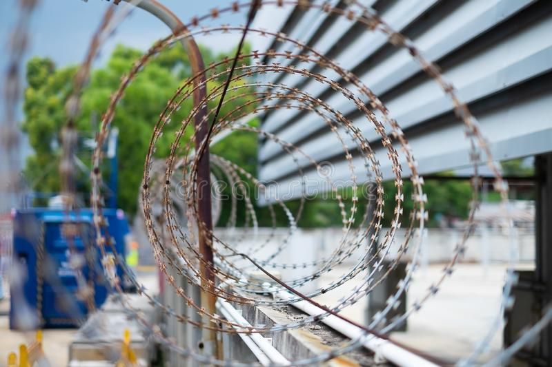 Barbed wire fences installed on the wall to protect the area royalty free stock photo