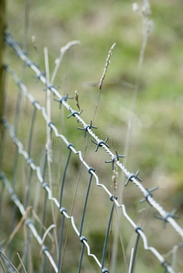 Barbed Wire Fencing stock images