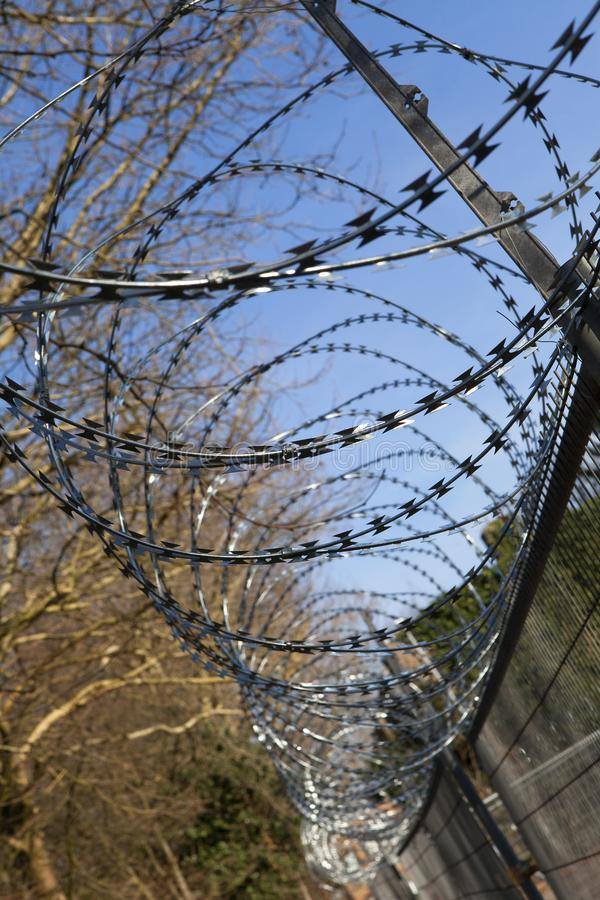 Barbed wire near prison. In the Netherlands royalty free stock photography