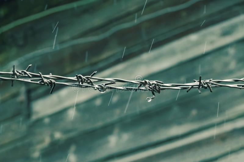 Barbed wire raining cold background wooden wall royalty free stock photo