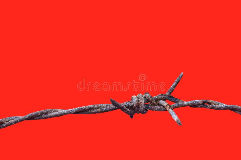 Barbed wire rust old isolated on red background, barbed wire rusty meaning to incarcerate, imprison, detention center stock image