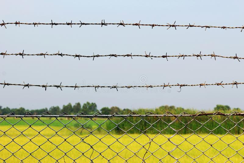 Rusty barbed wire detention center at countryside style stock photo