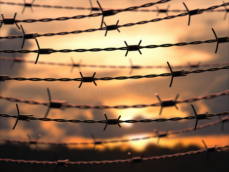 Barbed Wire Sky Stock Photo